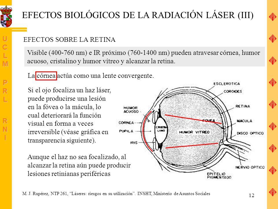 EFECTOS BIOLÓGICOS DE LA RADIACIÓN LÁSER (III)