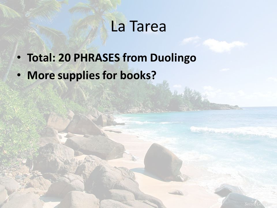 La Tarea Total: 20 PHRASES from Duolingo More supplies for books