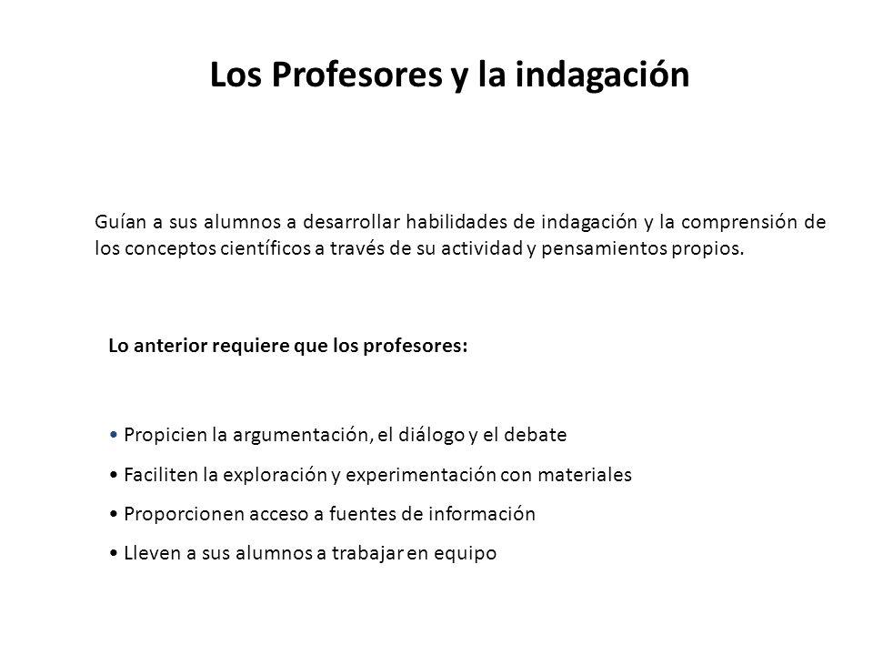 Los Profesores y la indagación
