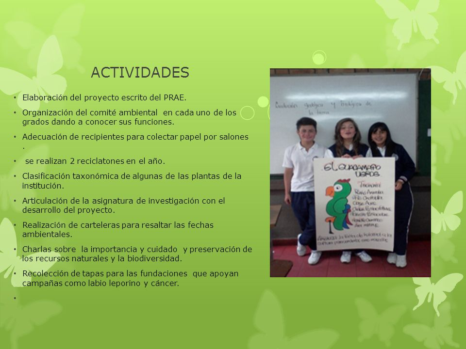 ACTIVIDADES Elaboración del proyecto escrito del PRAE.