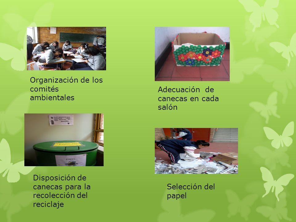 Organización de los comités ambientales