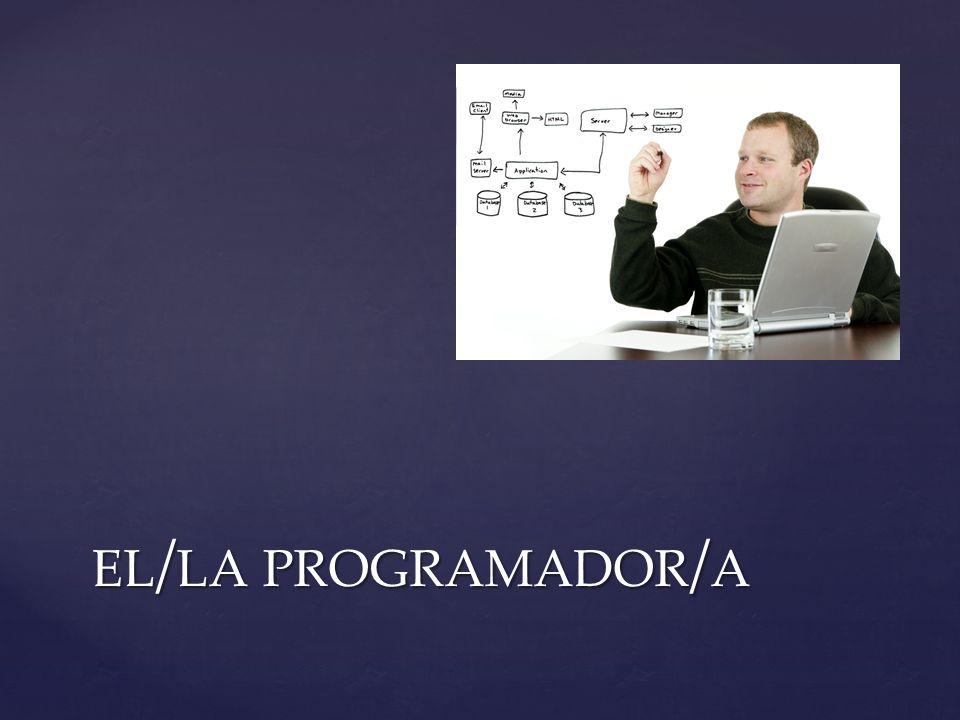el/la programador/a