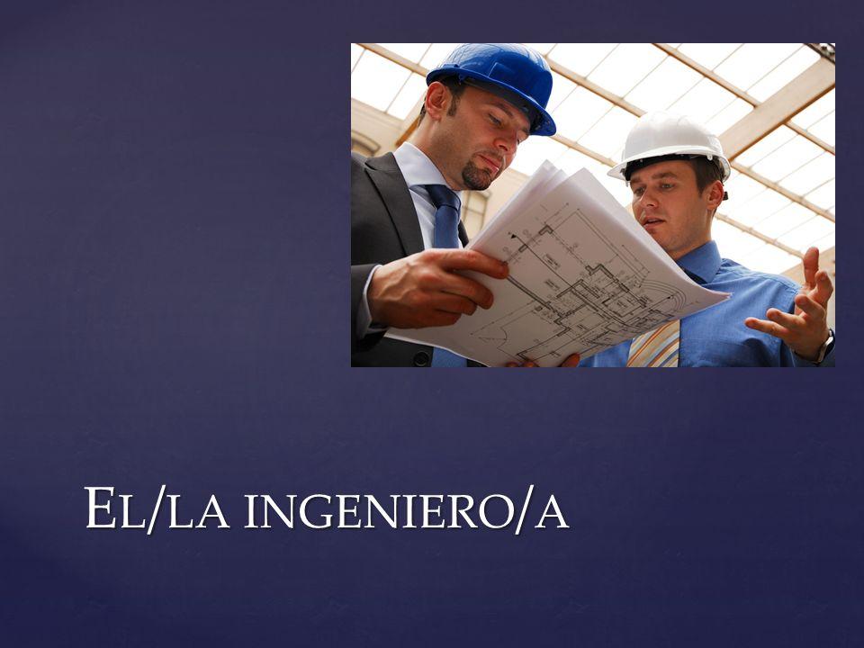 El/la ingeniero/a