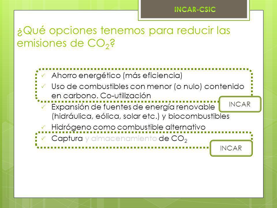 ¿Qué opciones tenemos para reducir las emisiones de CO2