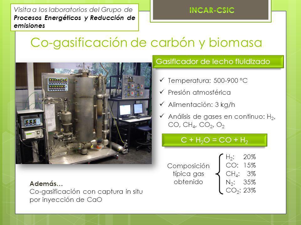 Composición típica gas obtenido
