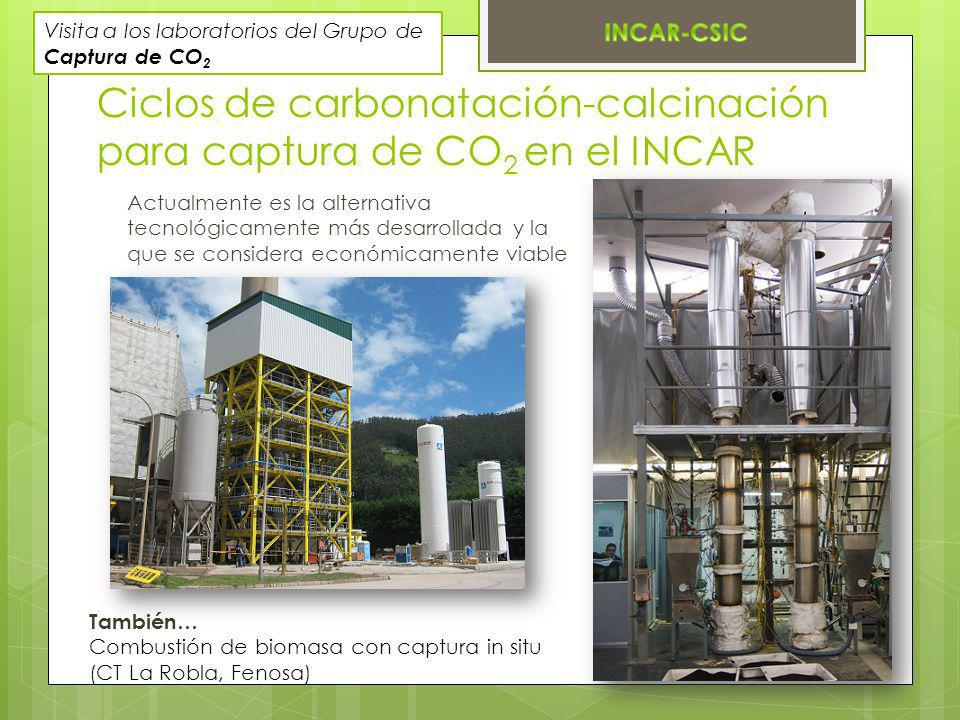 Ciclos de carbonatación-calcinación para captura de CO2 en el INCAR