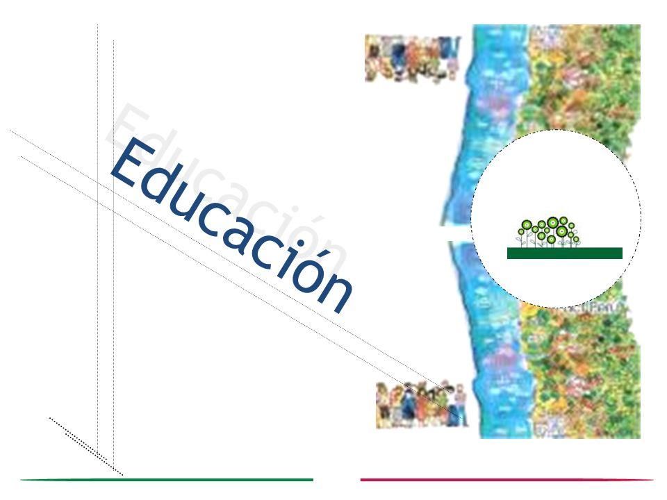 Educación 6