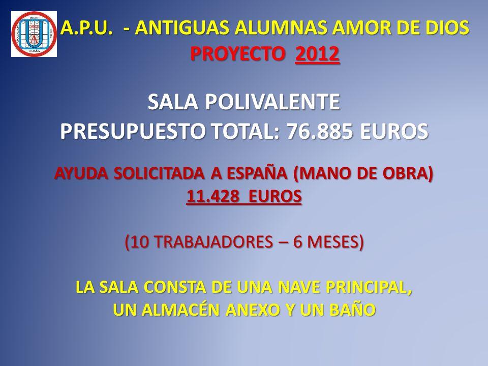 SALA POLIVALENTE PRESUPUESTO TOTAL: 76.885 EUROS