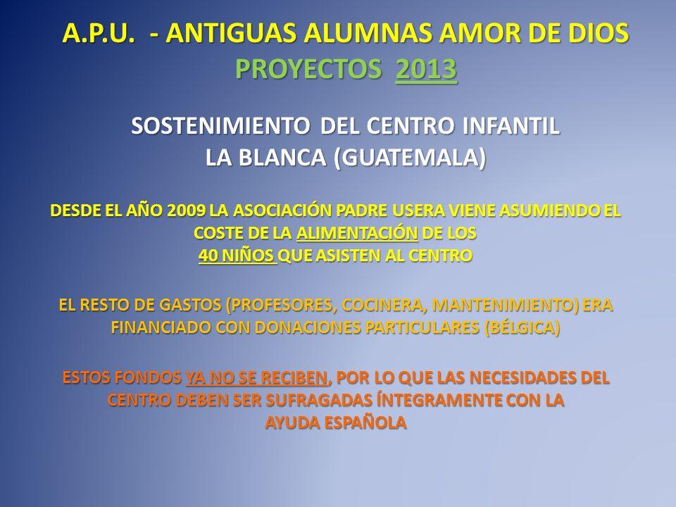 A.P.U. - ANTIGUAS ALUMNAS AMOR DE DIOS PROYECTOS 2013