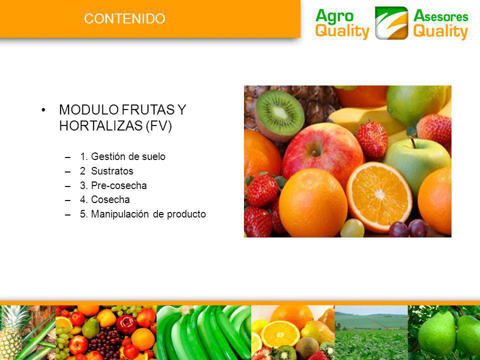MODULO FRUTAS Y HORTALIZAS (FV)