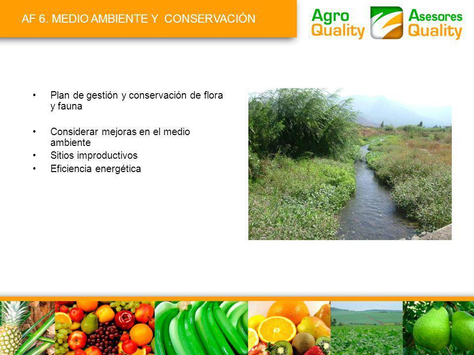 AF 6. MEDIO AMBIENTE Y CONSERVACIÓN