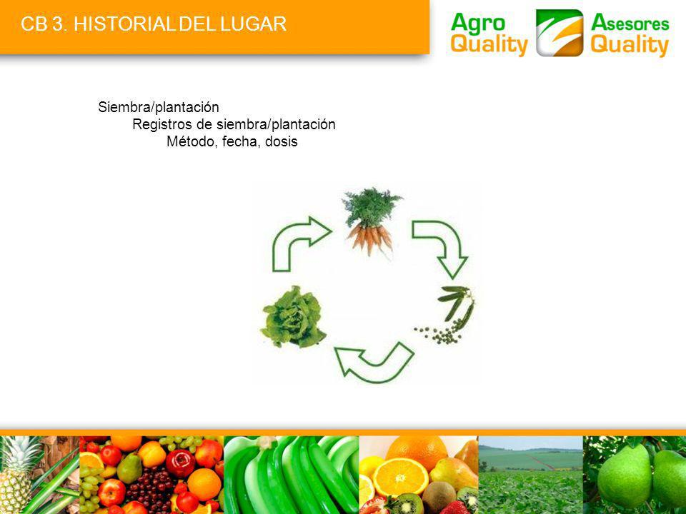 CB 3. HISTORIAL DEL LUGAR Siembra/plantación