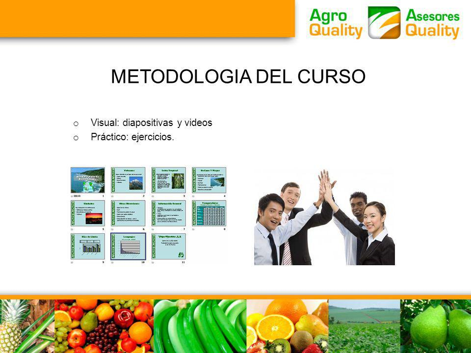 METODOLOGIA DEL CURSO Visual: diapositivas y videos