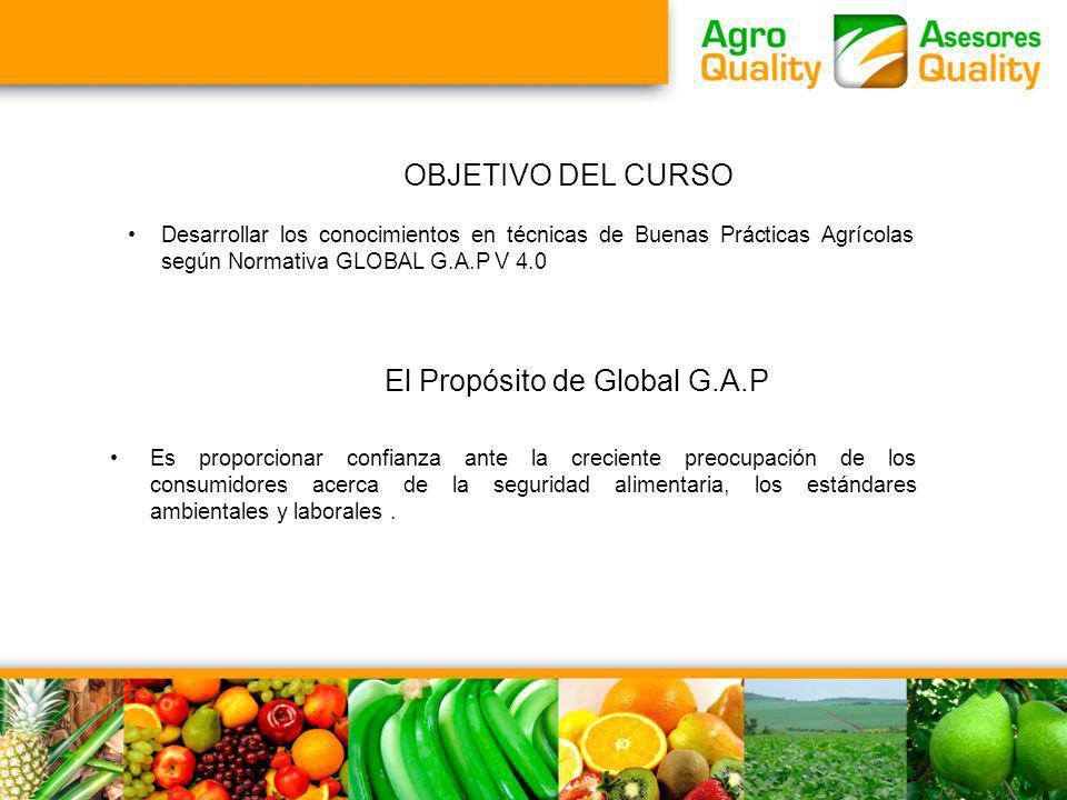 El Propósito de Global G.A.P