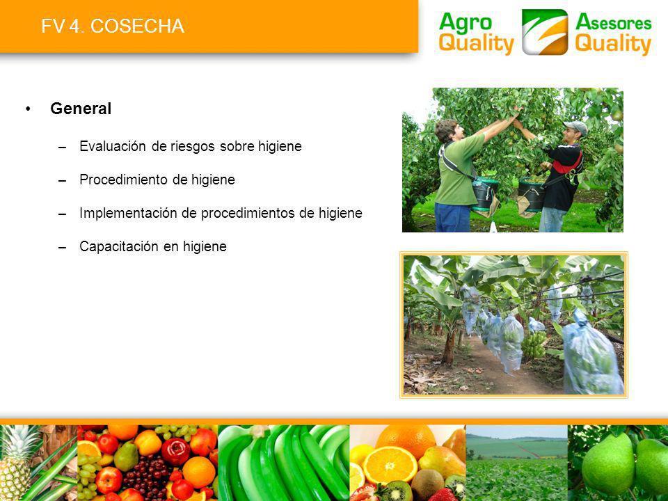 FV 4. COSECHA General Evaluación de riesgos sobre higiene