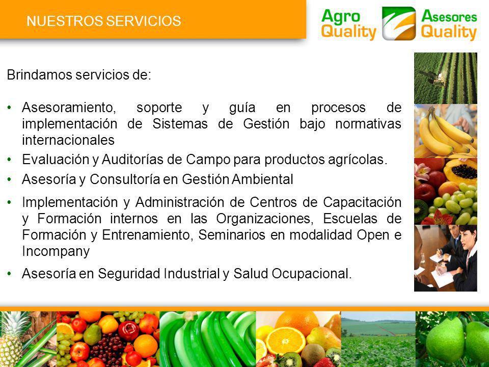 NUESTROS SERVICIOS Brindamos servicios de: