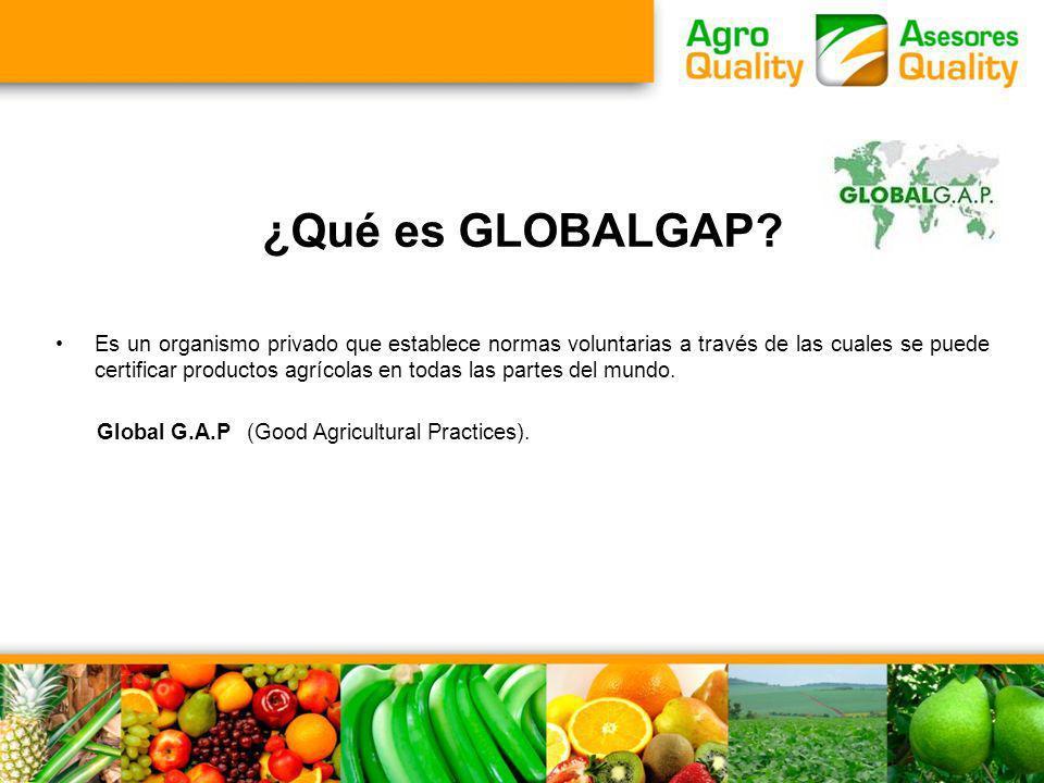 ¿Qué es GLOBALGAP