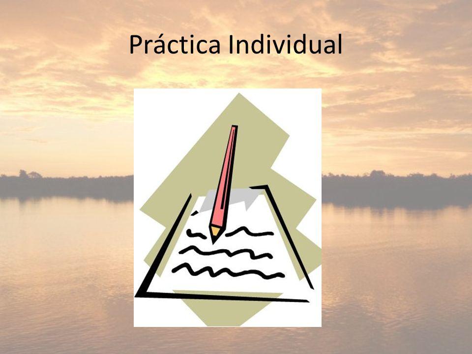 Práctica Individual