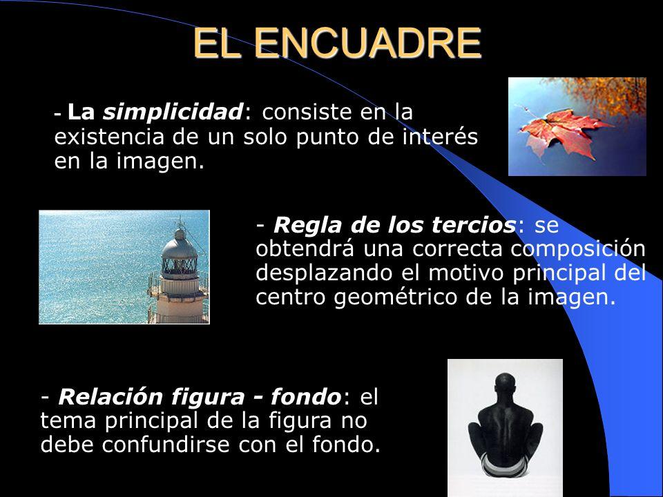 EL ENCUADRE- La simplicidad: consiste en la existencia de un solo punto de interés en la imagen.