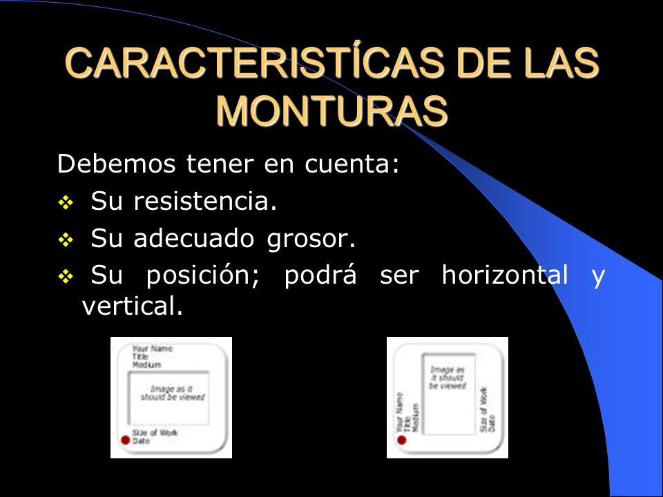 CARACTERISTÍCAS DE LAS MONTURAS