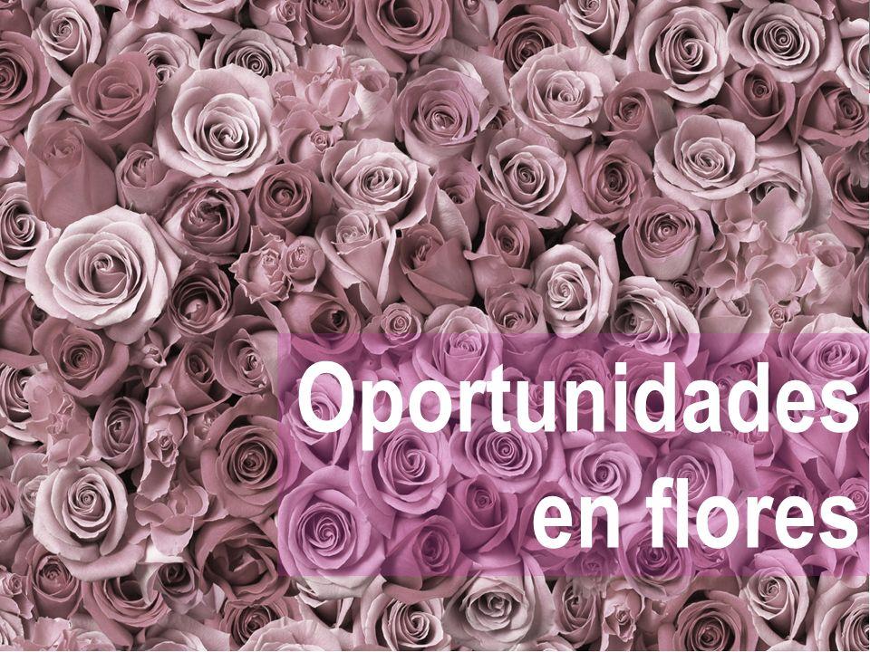Oportunidades en flores