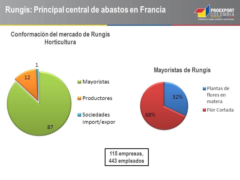 Rungis: Principal central de abastos en Francia