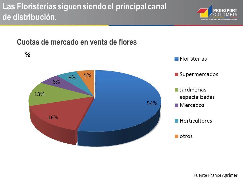 Las Floristerías siguen siendo el principal canal de distribución.