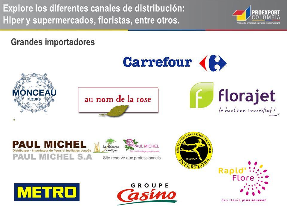 Explore los diferentes canales de distribución: Hiper y supermercados, floristas, entre otros.