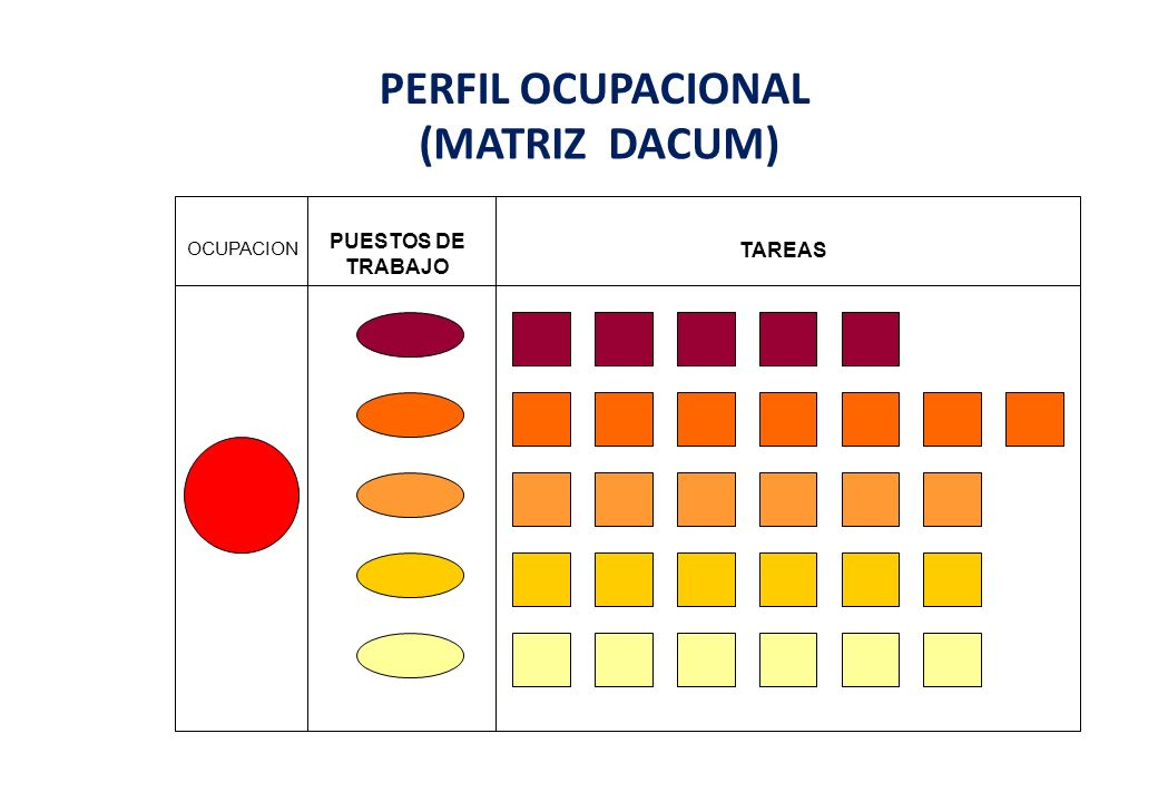 PERFIL OCUPACIONAL (MATRIZ DACUM)