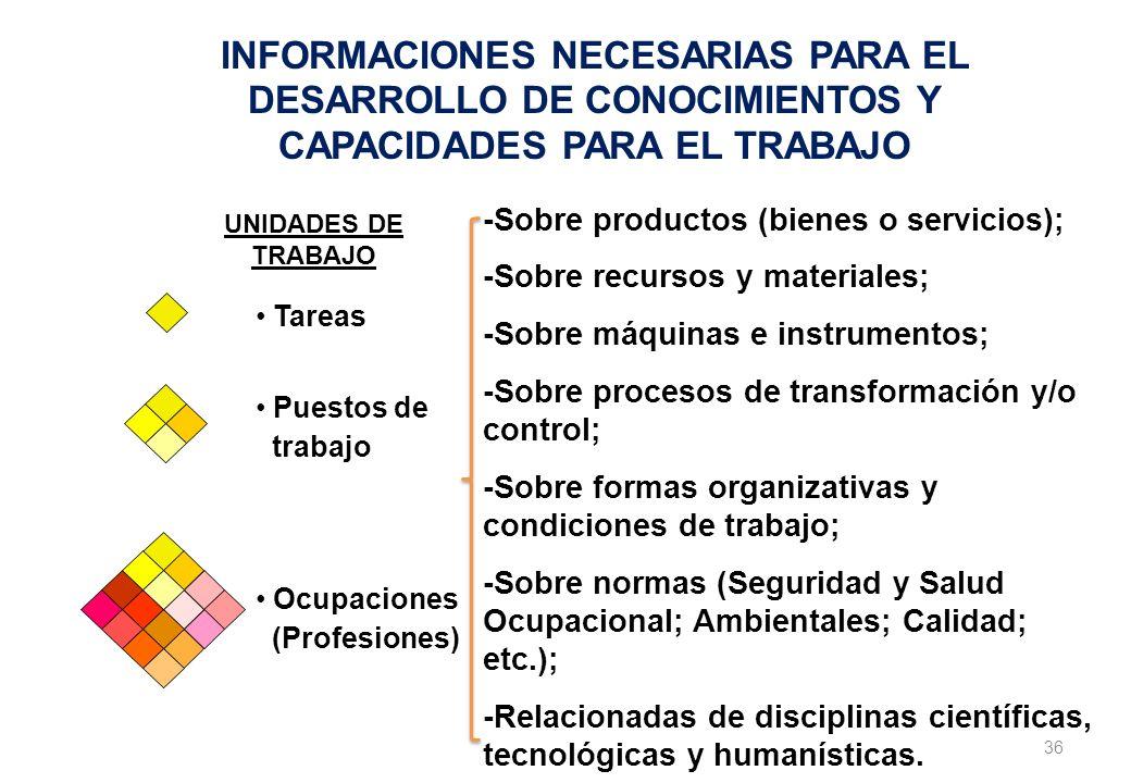 INFORMACIONES NECESARIAS PARA EL DESARROLLO DE CONOCIMIENTOS Y CAPACIDADES PARA EL TRABAJO
