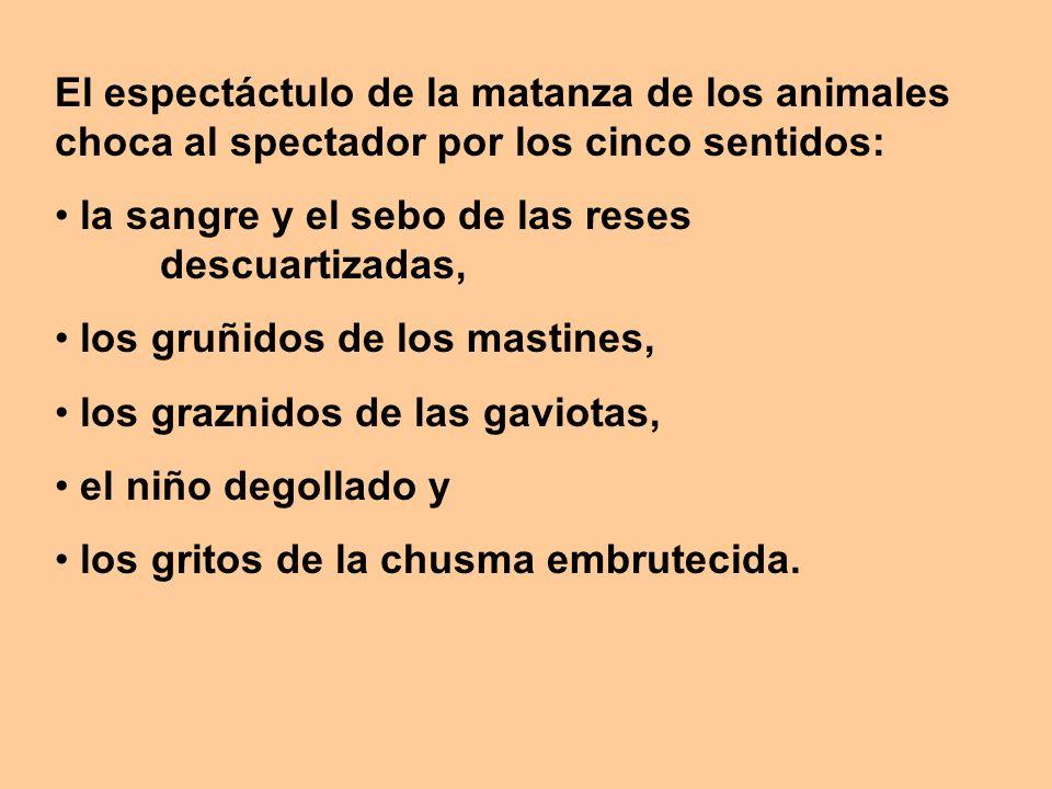 El espectáctulo de la matanza de los animales choca al spectador por los cinco sentidos: