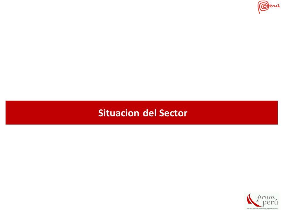 Situacion del Sector