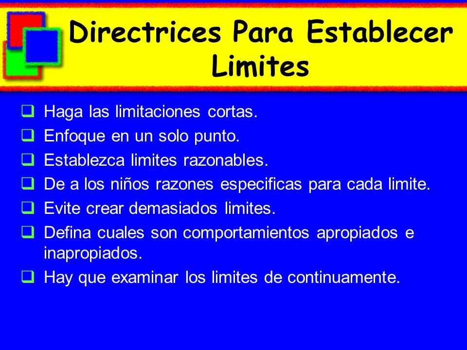 Directrices Para Establecer Limites