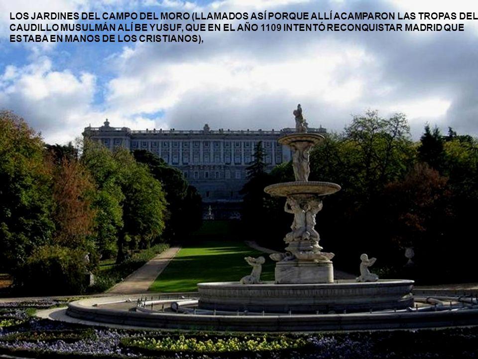 LOS JARDINES DEL CAMPO DEL MORO (LLAMADOS ASÍ PORQUE ALLÍ ACAMPARON LAS TROPAS DEL CAUDILLO MUSULMÁN ALÍ BE YUSUF, QUE EN EL AÑO 1109 INTENTÓ RECONQUISTAR MADRID QUE ESTABA EN MANOS DE LOS CRISTIANOS),