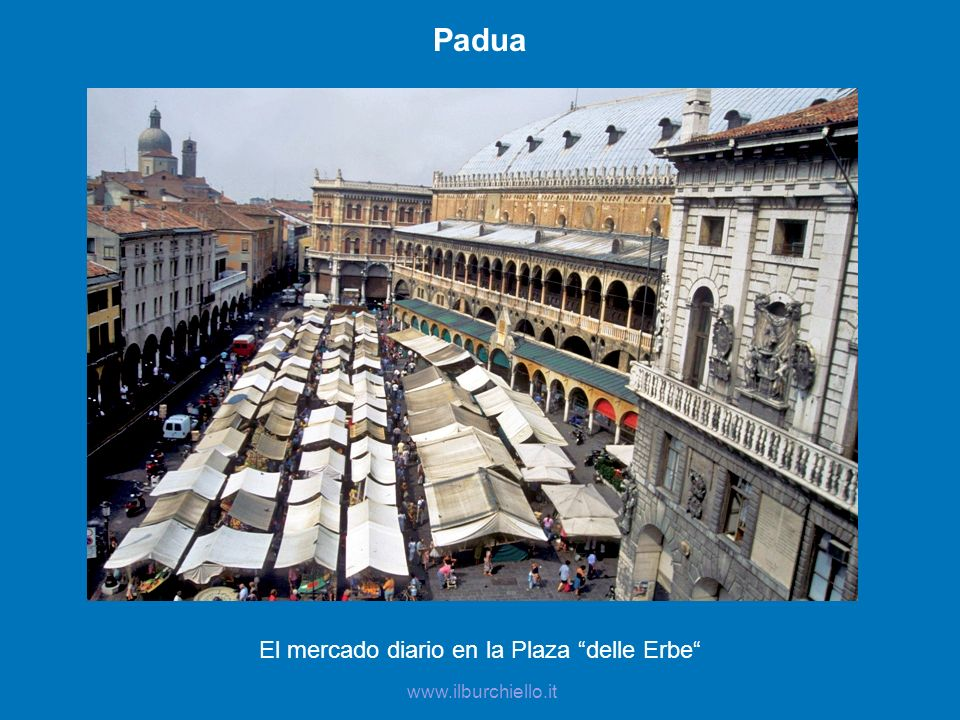 El mercado diario en la Plaza delle Erbe