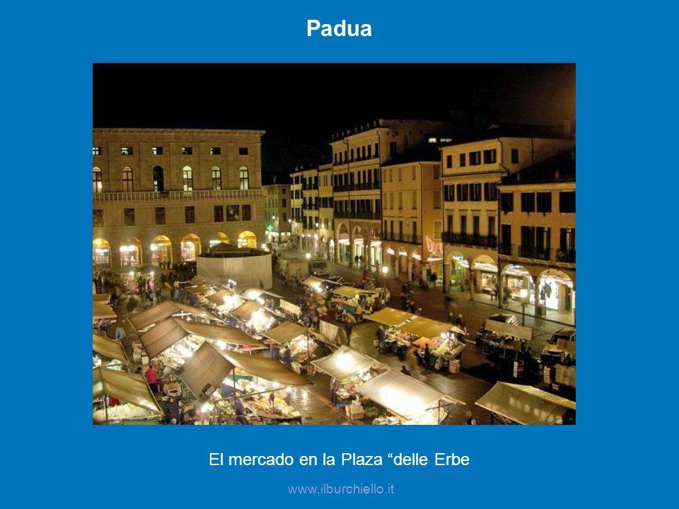 El mercado en la Plaza delle Erbe