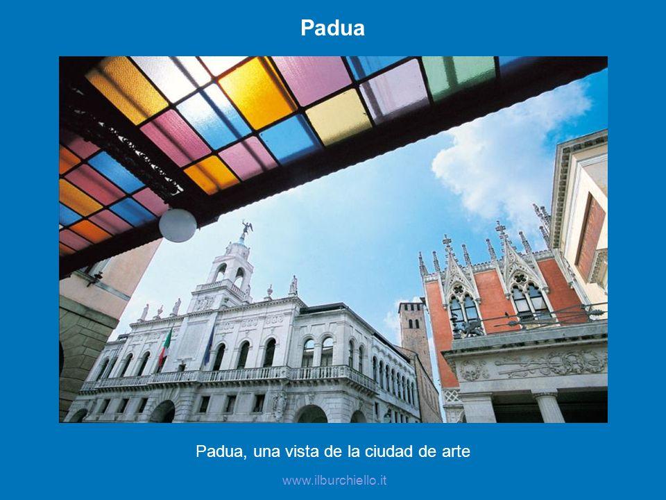 Padua, una vista de la ciudad de arte