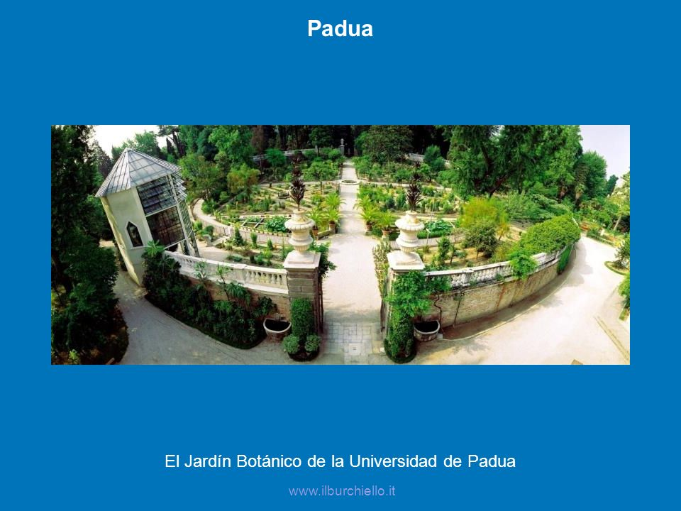 El Jardín Botánico de la Universidad de Padua