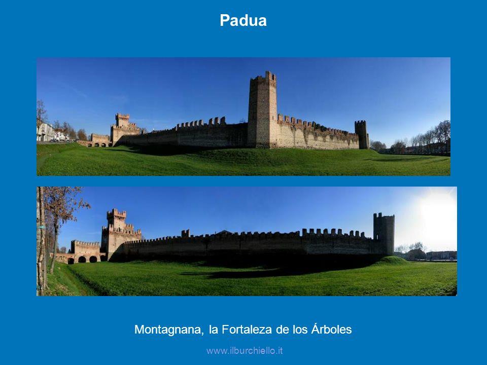 Montagnana, la Fortaleza de los Árboles