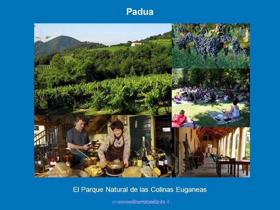 El Parque Natural de las Colinas Euganeas