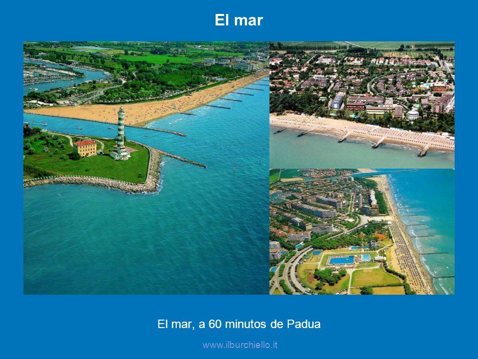 El mar, a 60 minutos de Padua