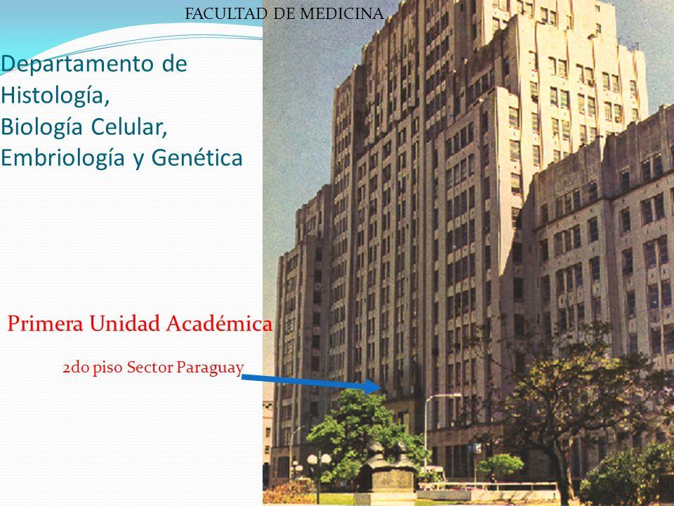 Departamento de Histología, Biología Celular, Embriología y Genética