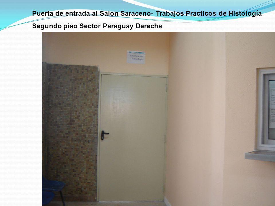 Puerta de entrada al Salon Saraceno- Trabajos Practicos de Histología