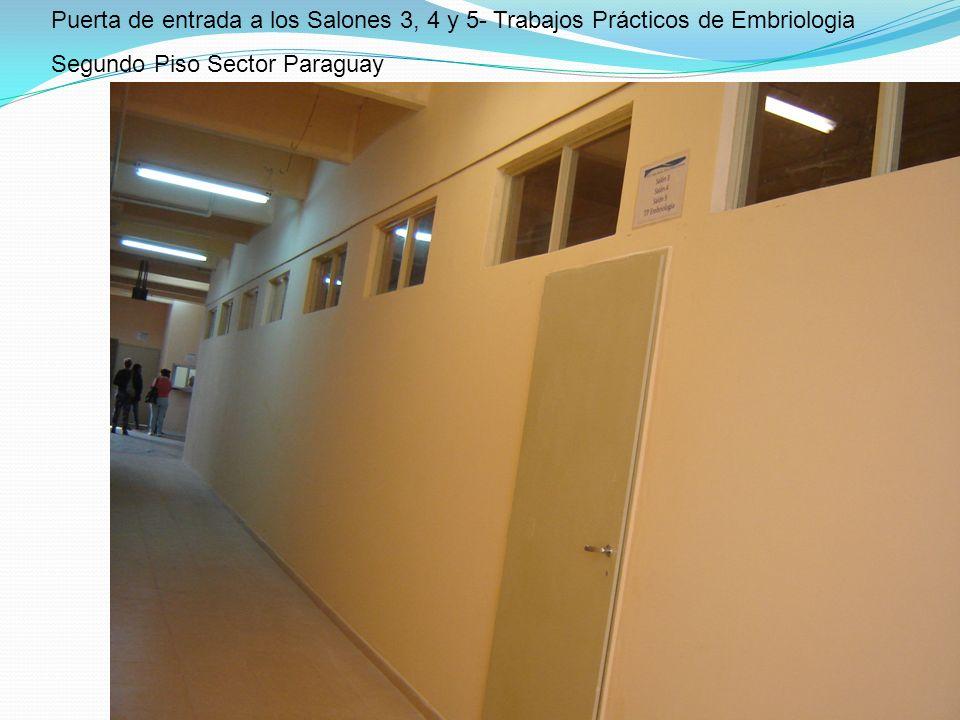 Puerta de entrada a los Salones 3, 4 y 5- Trabajos Prácticos de Embriologia