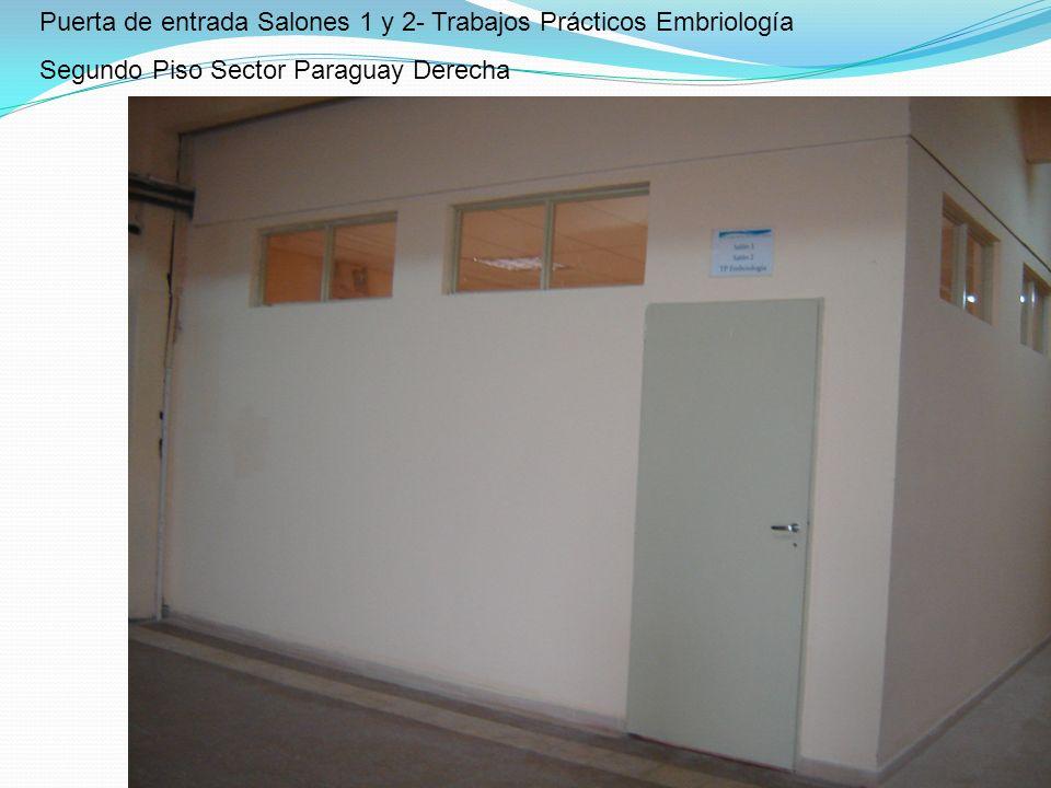 Puerta de entrada Salones 1 y 2- Trabajos Prácticos Embriología