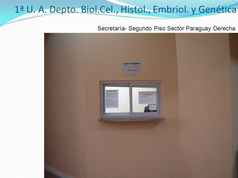 1ª U. A. Depto. Biol.Cel., Histol., Embriol. y Genética