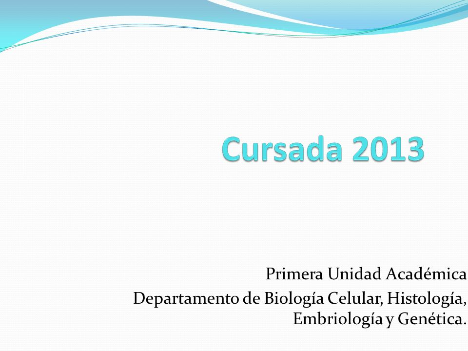 Primera Unidad Académica