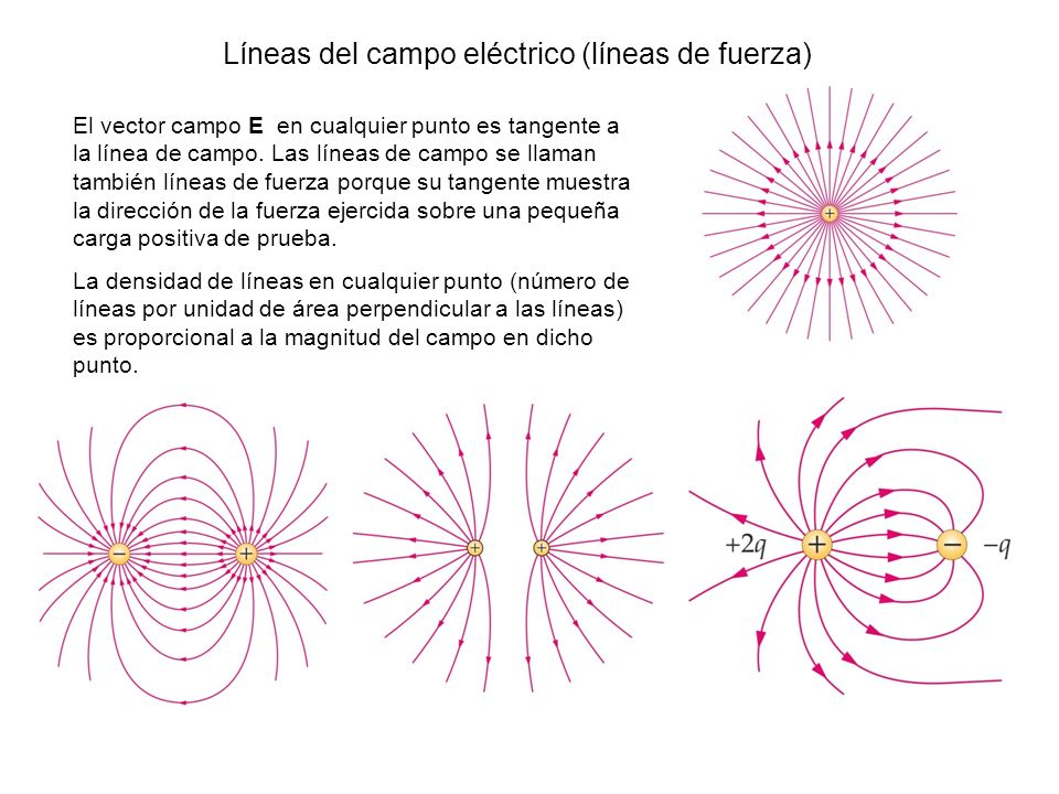 Líneas del campo eléctrico (líneas de fuerza)