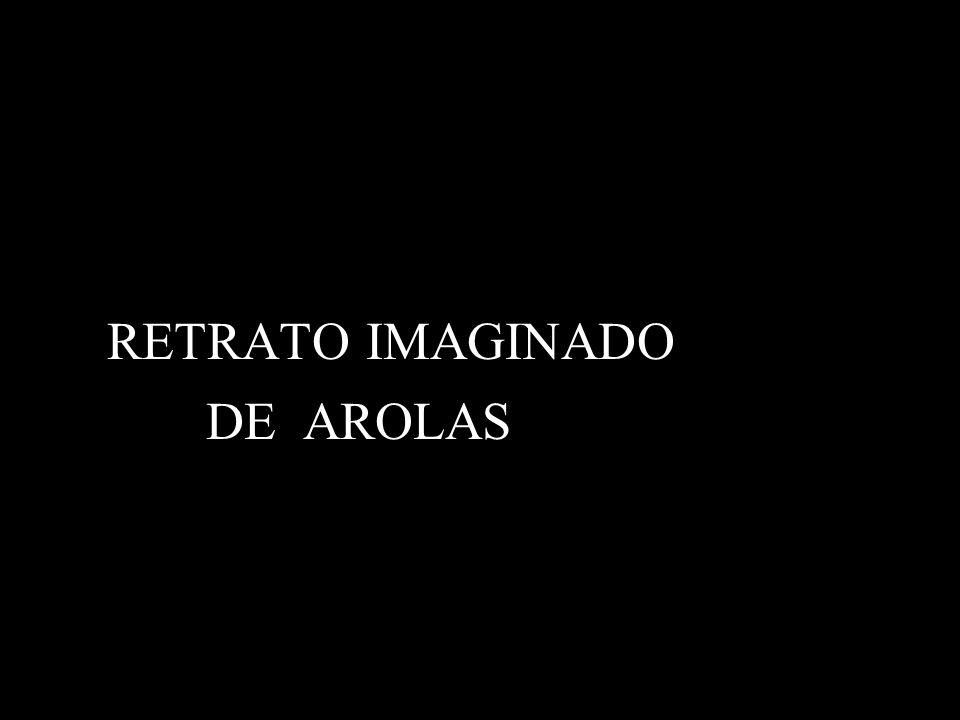RETRATO IMAGINADO DE AROLAS