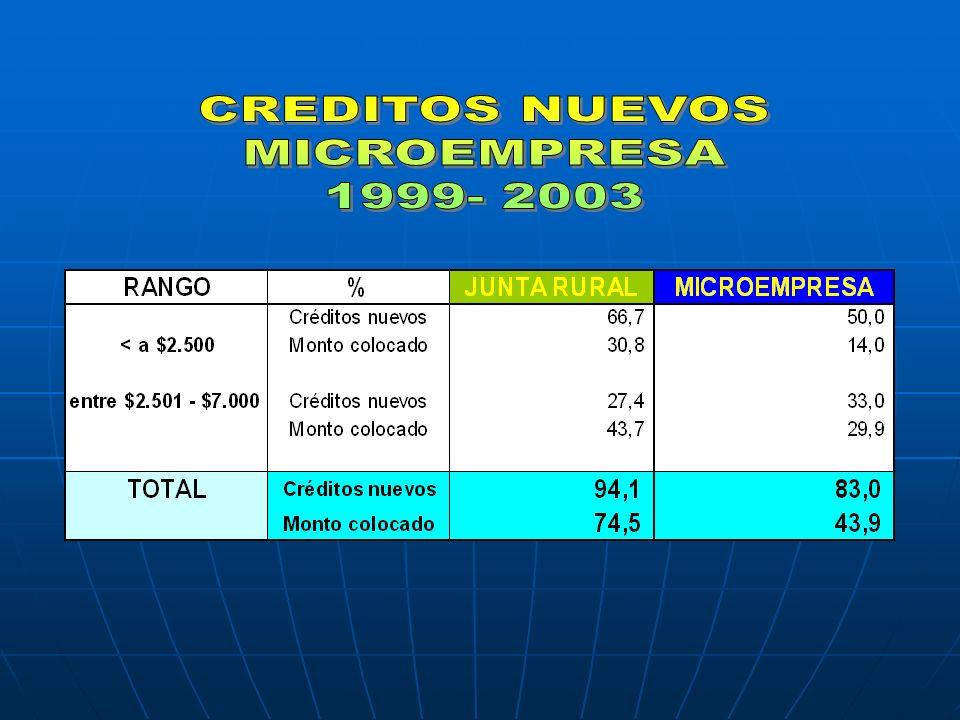 CREDITOS NUEVOS MICROEMPRESA 1999- 2003